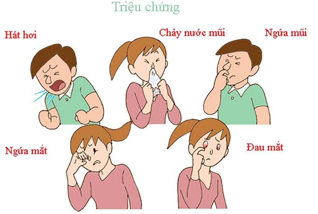 Các biểu hiện điển hình của viêm mũi dị ứng